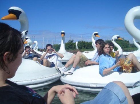 swans bangor 2